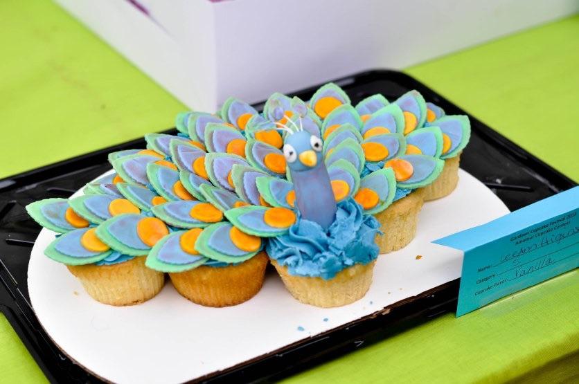 2019 Amateur Cupcake Contest – Gardiner Cupcake Festival 12